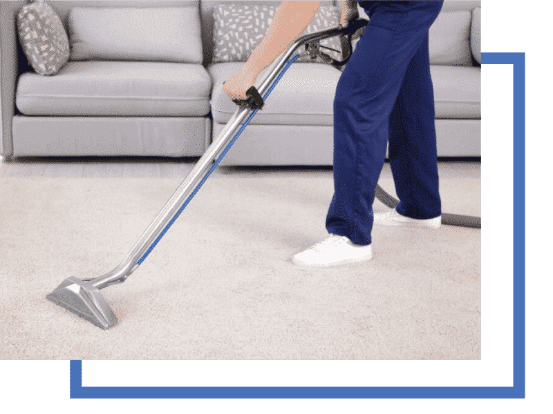 professional carpet cleaning on  carpet